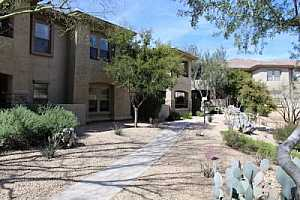 VINTAGE AT GRAYHAWK Condos For Sale