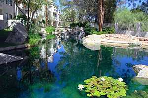 MLS # 5691668 : 10080 MOUNTAINVIEW LAKE UNIT A202