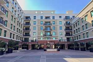 Browse active condo listings in THE MARK