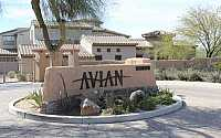 AVIAN AT GRAYHAWK Condos and Townhomes For Sale